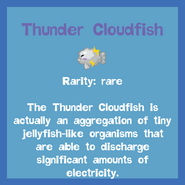 Fish2 Thunder Cloudfish