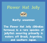 Fish2 Flower Hat Jelly