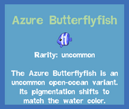Fish2 Azure Butterflyfish