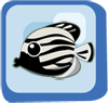 Fish Emperor Angelfish