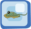 Fish Bluespotted Ribbontail Ray
