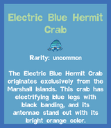 Fish2 Electric Blue Hermit Crab