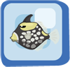 Fish Clown Triggerfish