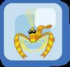 Fish Gold Banded Coral Shrimp