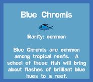 Fish2 Blue Chromis