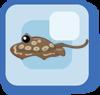 Fish Round Stingray