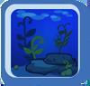 BG Seaweed Garden