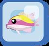 Fish Sunshine Chromis