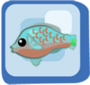 Fish Bicolor Parrotfish