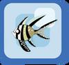 Fish Kaudern's Cardinalfish
