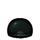Aquaria hard-beetle