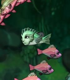 Naija fish