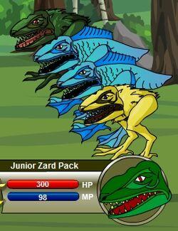 Junior Zard Pack