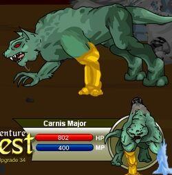Carnis Major