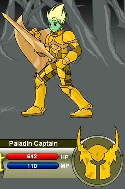Paladin Captain