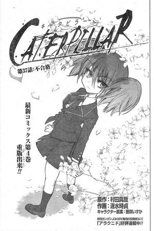Chapter 37 (Caterpillar)
