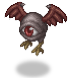 Flyingeyeshadows