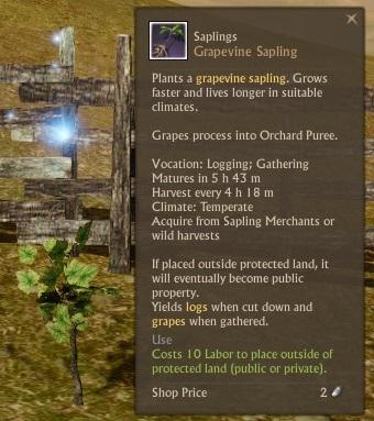 archeage wild plants locations