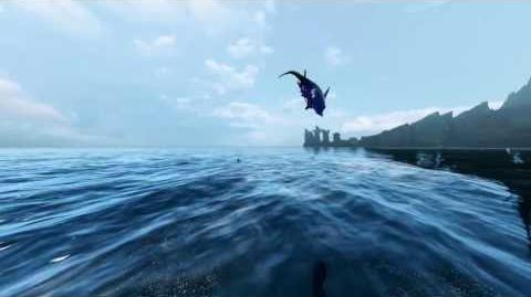Archeage Dolphin Skills and Gameplay