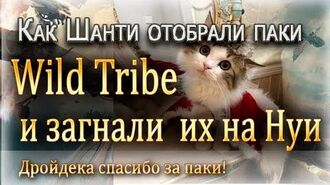 Как Шанти отобрали паки гильдии Wild Tribe и загнали их на Нуи 26.05.2019