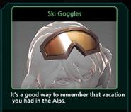 Renoah Ski Goggles