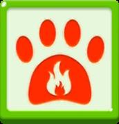 Blaze Spirit