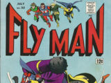 Fly Man Vol 1 32