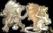 Breed pearlcatcher