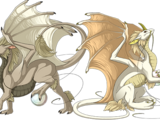 Pearlcatcher Dragons