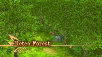 Retea Forest Intro