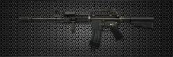 Arctic Combat M4A1