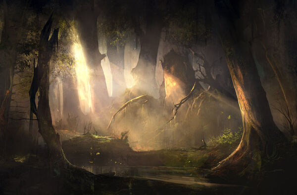 Mysterious forest sunset by sergeyzabelin-d9yvf5d