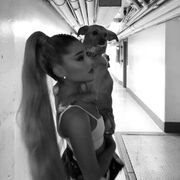 Ariana with Toulouse IG May 31