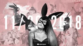Dangerous Woman Diaries Promo