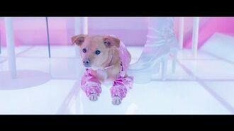 Ariana Grande - thank u, next (the fragrance)