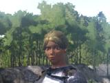 Armor: Iron