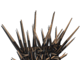 Деревянные шипы