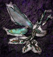 Aberration Mystery Creature 11