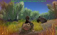 ARK-Beelzebufo Screenshot 003