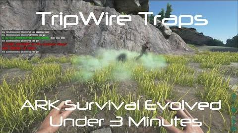Tripwire Alarm Trap
