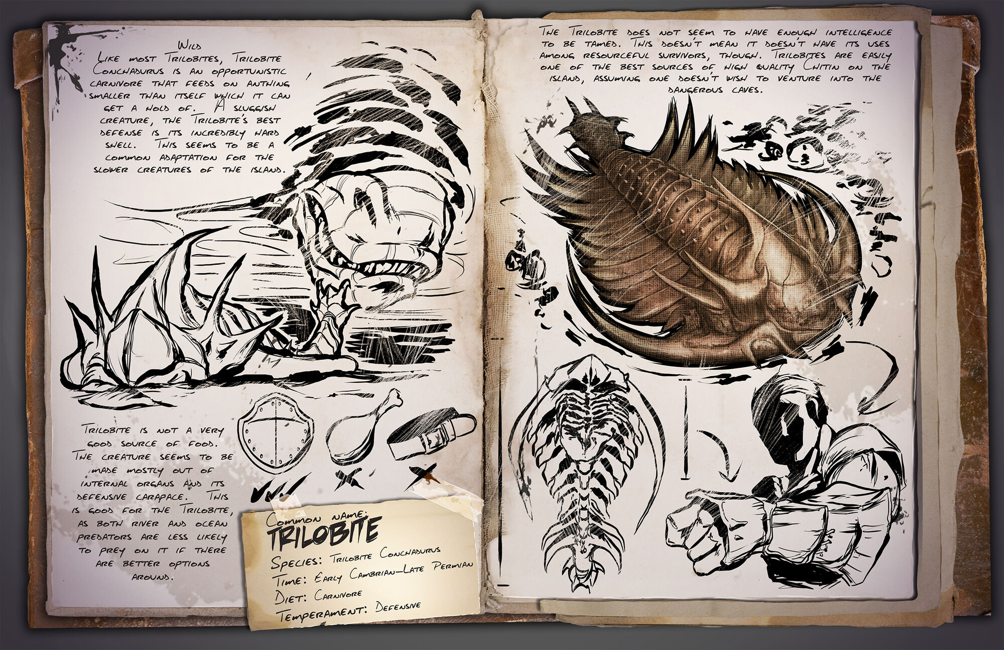 Trilobite | ARK: Survival Evolved Wiki | FANDOM powered by Wikia