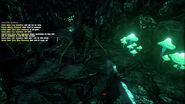 ARK-Araneomorphus Screenshot 001