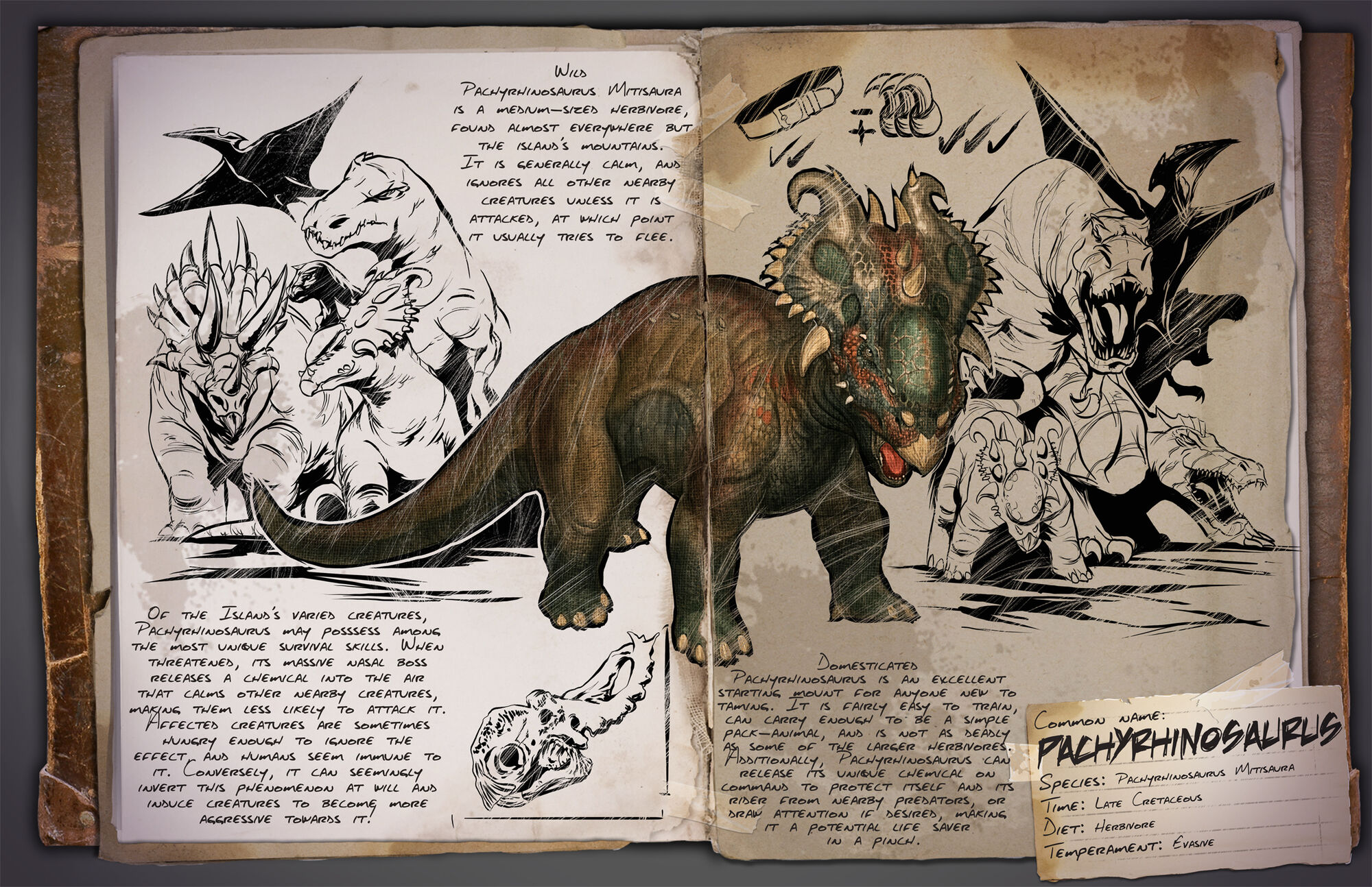 Pachyrhinosaurus Ark Survival Evolved Wiki Fandom Powered By Wikia