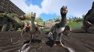 Microraptor04