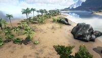 Biome Beach