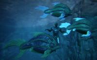 Piranha Size
