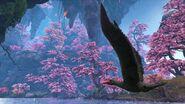 Large.5a0fb8b5bcbaa BlueDragon-Paradise