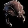 Chitin Helmet