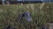 ARK-Dimorphodon Screenshot 003