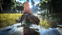 Ark survival evolved dimetrodon